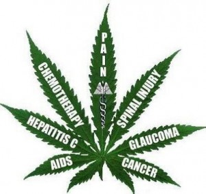 Marijuana Cures