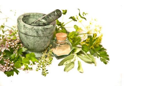 herbal-medicne